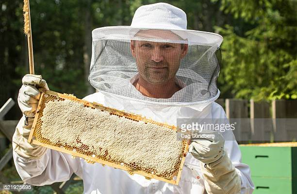 Beekeeper with honeycombs in frame