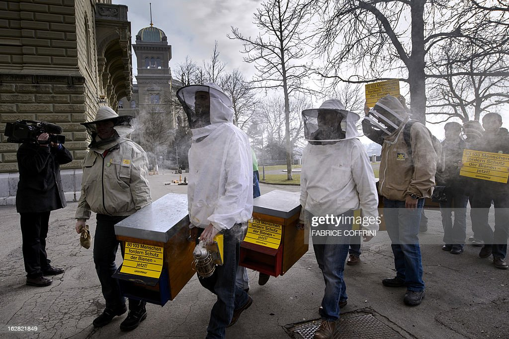 Beekeepers carry hives on February 28, 2013 in Bern during the delivering to the Swiss Chancellery of a 80103 signatures petition collected by Greenpeace asking the Swiss government to protect the bees and taking urgent measures against the use of pesticides harmful to bees in agriculture.