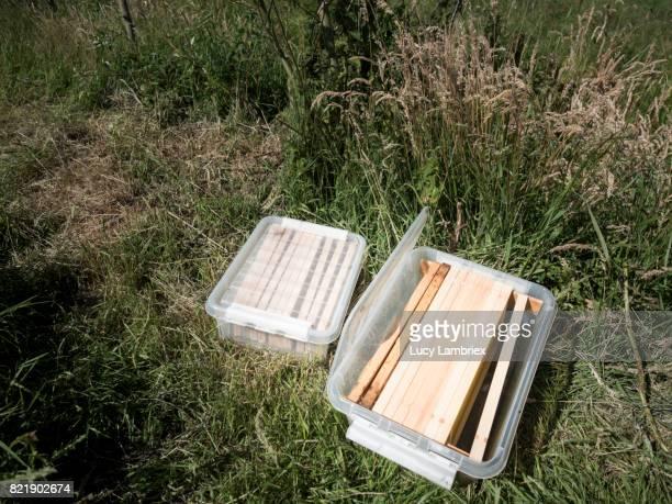 Beekeeper's gear: new starter comb