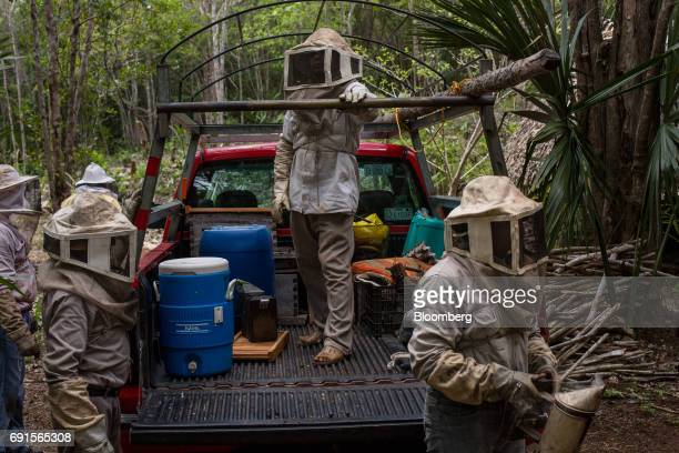Beekeepers stand next to a pickup truck at the Flor de Tajonal Cooperative farm in Felipe Carrillo Puerto Quintana Roo Mexico on Sunday May 21 2017...