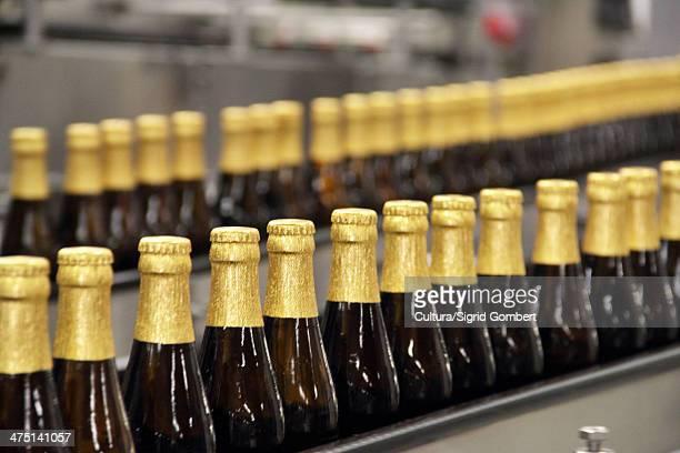Beer bottles on conveyor belt in brewery