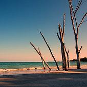 Beer Can Island, Florida