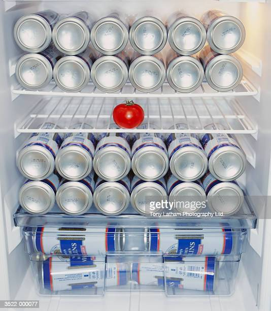 Beer Cans and Tomato in Fridge