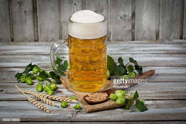 Beer in a beer mug, hop and malt