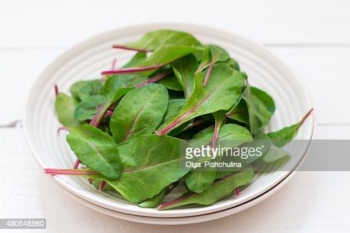 Remolacha hojas : Foto de stock