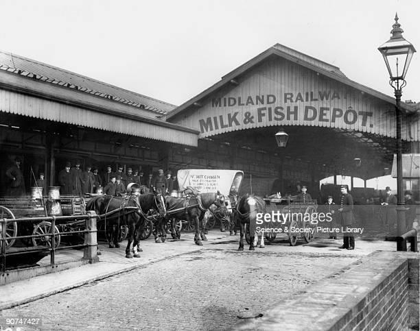Before the advent of motor traffic the railways made extensive use of horses for collection and delivery to and from their stations Sommerstown Milk...