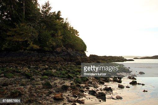 Behind the Tofino Rocks : Stock Photo