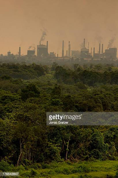 Behind this green layer of jungle is the polluted interests of the economy which is apparent throughout the country A village of green revolution...