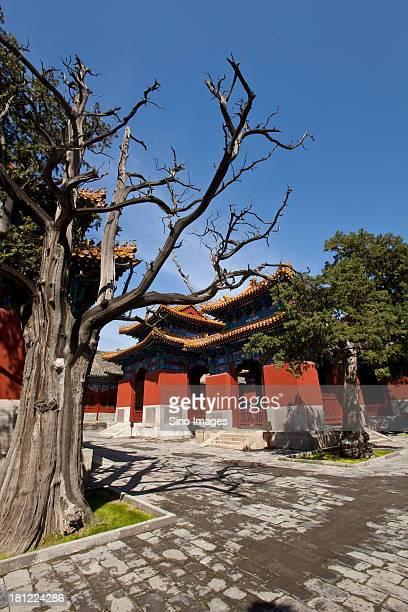 Beijing Imperial Academy