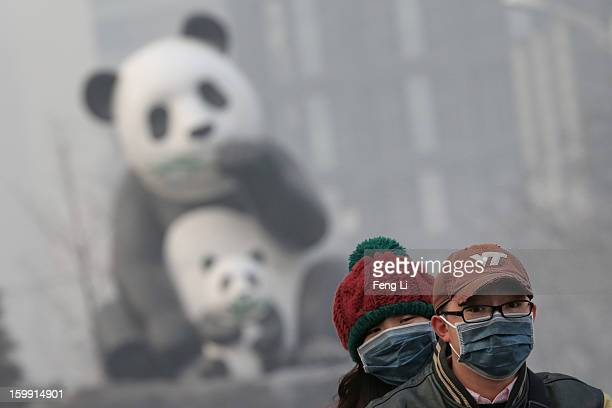 Beijing residents wearing the masks ride a motorcycle through a panda sculpture during severe pollution on January 23 2013 in Beijing China The air...