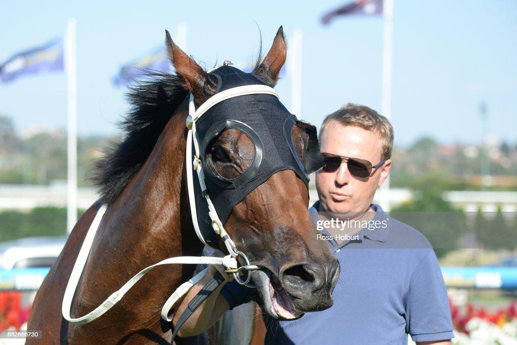 Bel Burgess after winning Ranvet Handicap at Moonee Valley Racecourse on March 13, 2017 in Moonee Ponds, Australia.