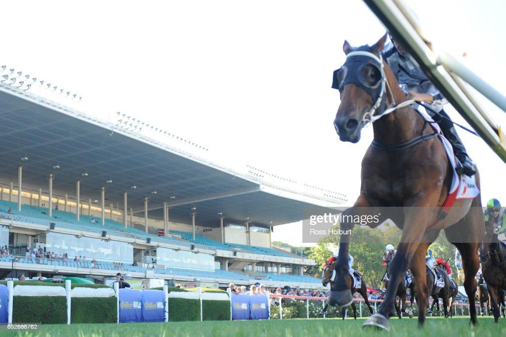 Bel Burgess ridden by Jordan Childs wins the Ranvet Handicap at Moonee Valley Racecourse on March 13, 2017 in Moonee Ponds, Australia.