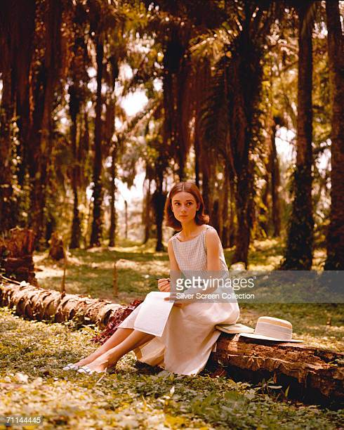 Belgian born actress Audrey Hepburn writing a letter in a palm grove circa 1955