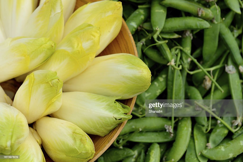 Belgian endive : Stock Photo