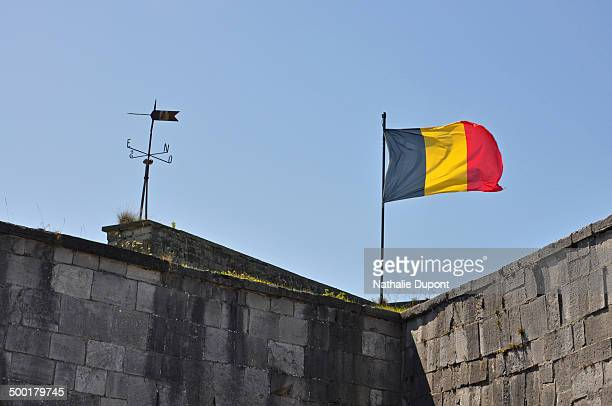 Belgian flag in the wind ...