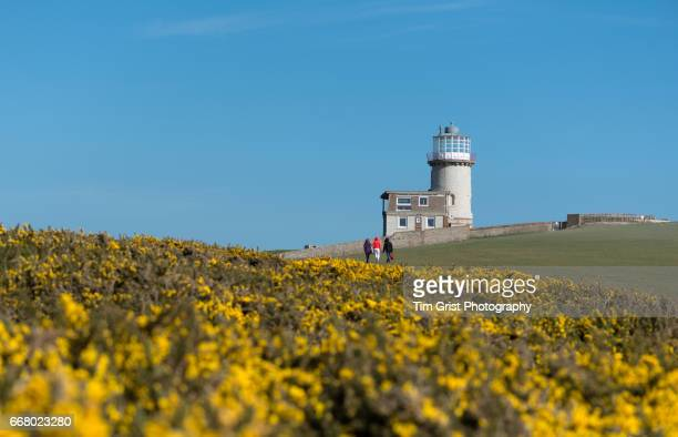 Belle Tout Lighthouse at Beachy Head