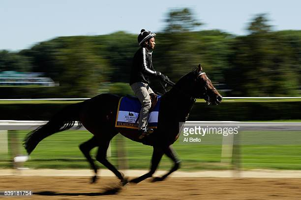 Belmont Stakes Contender Exaggerator trains with exercise rider Peedy Landry up prior to the 148th running of the Belmont Stakes at Belmont Park on...