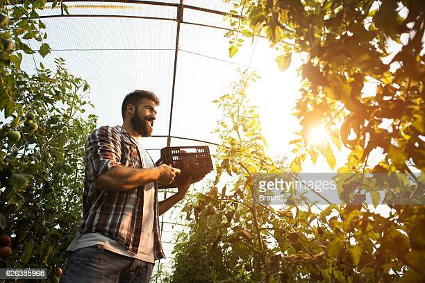 Below view of happy farmer in a greenhouse.