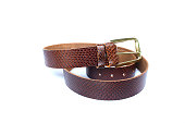 belt leather snake on isolated