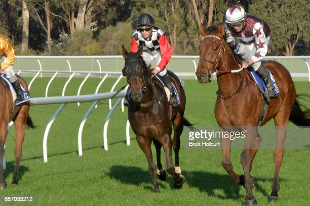 Ben Allen returns to the mounting yard on Tiny's Legacy after winning ClassicBet BM64 Handicap at Seymour Racecourse on May 23 2017 in Seymour...