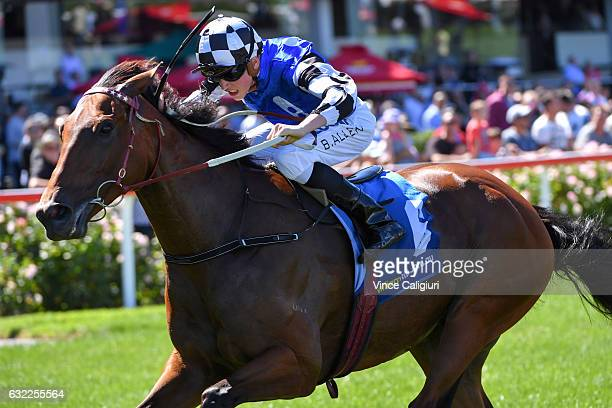 Ben Allen riding Big Duke wins Race 6 during Melbourne Racing at Moonee Valley Racecourse on January 21 2017 in Melbourne Australia