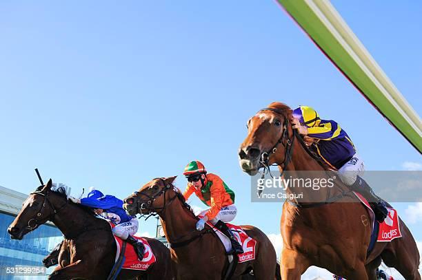 Ben Allen riding Gingie defeats Chris Parnham riding Jocasta and Craig Newitt riding Miles of Krishan in Race 4 during Melbourne racing at Caulfield...