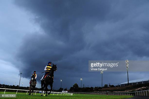 Ben Allen riding Scherzoso after galloping during Breakfast with the best at Moonee Valley Racecourse on October 18 2016 in Melbourne Australia