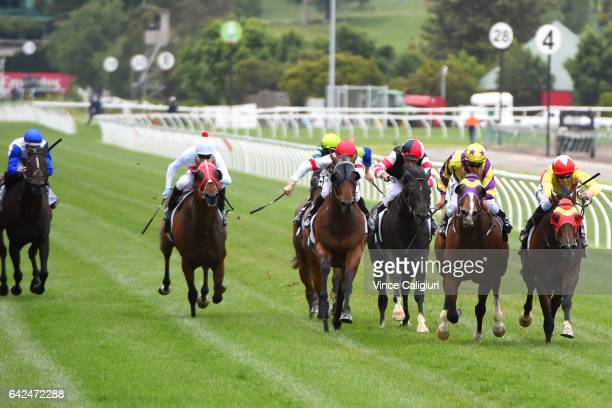 Ben Allen riding Well Sprung wins Race 3 during Melbourne Racing at Flemington Racecourse on February 18 2017 in Melbourne Australia