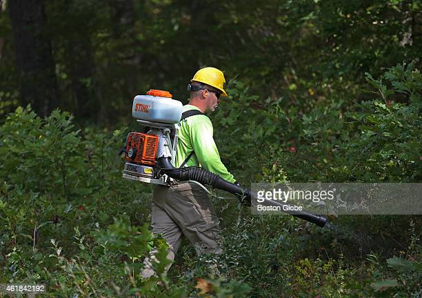 Ben Bray with Vegetation Control Services spraying brush After years of halting use of herbicides to kill vegetation around its utility lines on Cape...