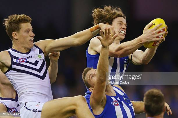Ben Brown of the Kangaroos marks the ball against Matt Taberner of the Dockers during the Round 4 AFL match between North Melbourne v Fremantle at...