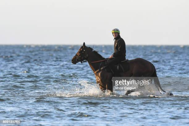 Ben Cadden riding Winx walks through the shallow waters of Altona Beach during a recovery session on October 9 2017 in Melbourne Australia