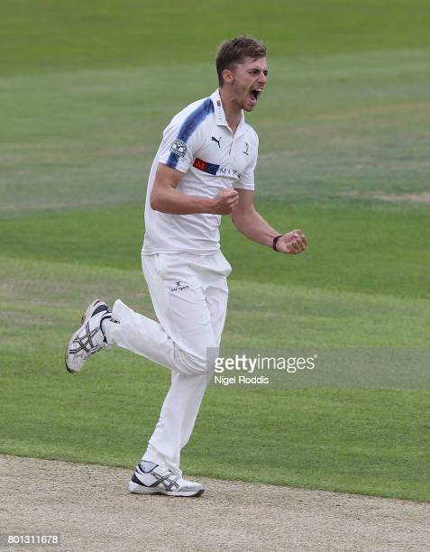 Ben Coad of Yorkshire celebrates taking the wicket of Mark Stoneman of Surrey during the Specsavers County Championship Division One match between...