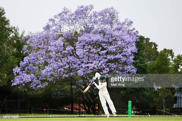 Ben Dunk of the Tigers bats during day one of the Sheffield Shield match between New South Wales and Tasmania at Bankstown Oval on November 14 2015...