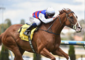 Ben E Thompson riding Choose wins Race 3 during Melbourne Racing at Moonee Valley Racecourse on January 23 2016 in Melbourne Australia
