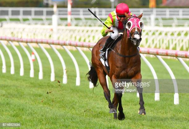 Ben E Thompson riding Kobayashi wins Race 5 Thoroughbred Club Cup during Melbourne Racing at Caulfield Racecourse on April 29 2017 in Melbourne...