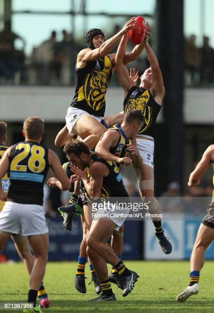 Ben Griffiths and Callum Moore of the Richmond Tigers attempt to mark during the round two VFL match between Sandringham and Richmond at Trevor...
