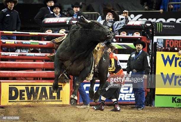 Ben Jones rides the bull 'Contraband' during Professional Bull Riders Monster Energy Buck off at the Madison Square Garden in New York on January 16...