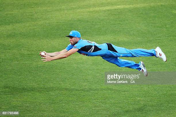 Ben Laughlin of the Adelaide Strikers takes a catch to dismiss Aaron Finch of the Melbourne Renegades during the Big Bash League match between the...