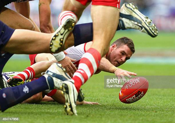 Ben McGlynn of the Swans gathers the ball during the First Qualifying Final AFL match between the Sydney Swans and the Fremantle Dockers at ANZ...
