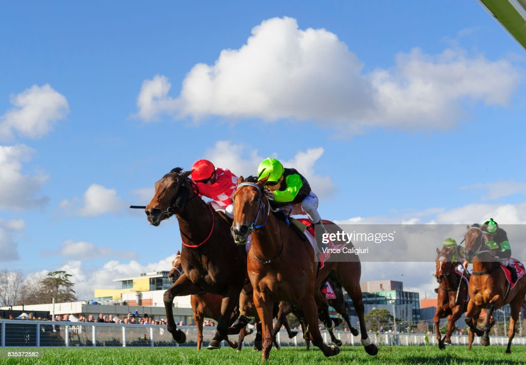 Ben Melhalm riding Crown Witness (r) defeats Craig Williams riding Catchy in Race 5 Quezette Stakes during Melbourne Racing at Caulfield Racecourse on August 19, 2017 in Melbourne, Australia.