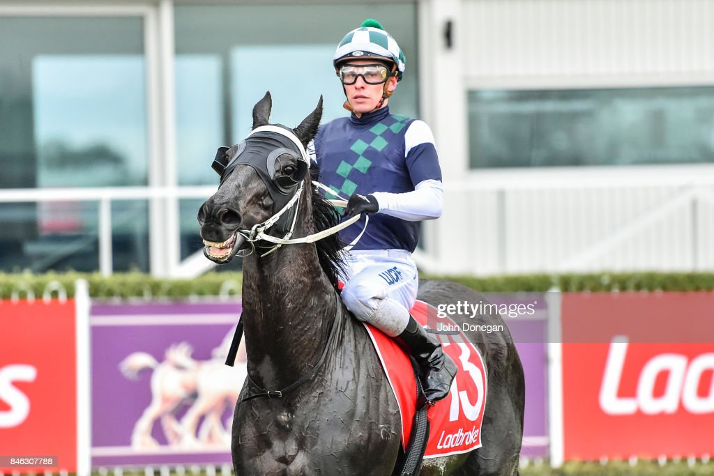 Ben Melham returns to the mounting yard aboard Hunting Hill after winning thebigscreencompany.com.au Handicap at Mornington Racecourse on September 13, 2017 in Mornington, Australia.