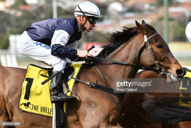 Ben Melham riding Almandin with a lap to go before finishing runner up in Race 5 during Melbourne Racing at Moonee Valley Racecourse on August 26...