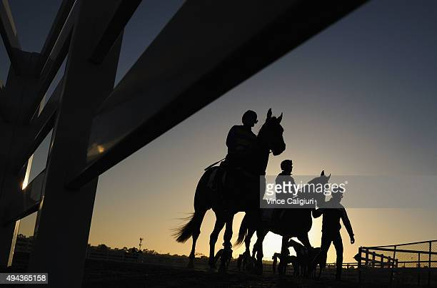 Ben Melham riding Extra Choice and Damian Lane riding Bullish Stock during a trackwork session at Flemington Racecourse on October 27 2015 in...