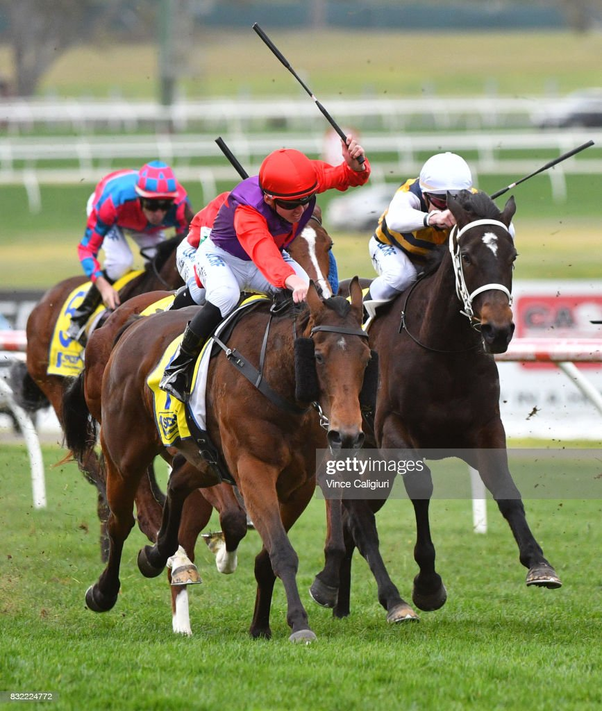 Ben Thompson riding Justice Glory wins Race 4, during Melbourne Racing at Sandown Lakeside on August 16, 2017 in Melbourne, Australia.