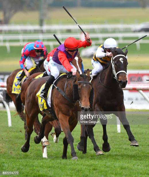 Ben Thompson riding Justice Glory wins Race 4 during Melbourne Racing at Sandown Lakeside on August 16 2017 in Melbourne Australia