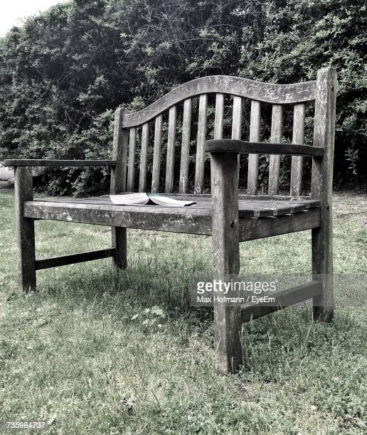 Bench Against Trees