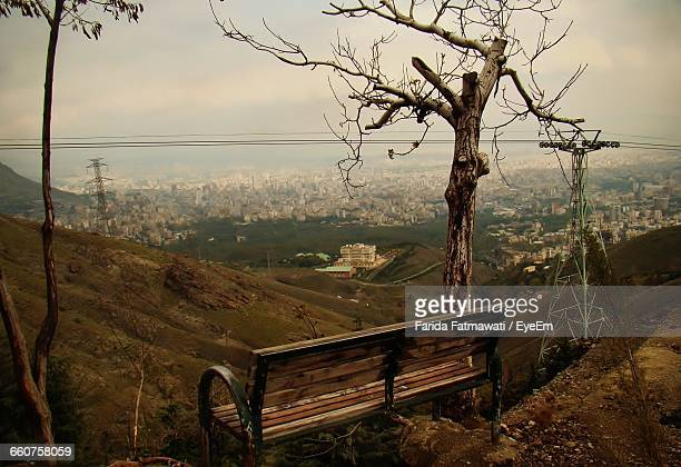 Bench And Bare Tree By Mountain Against Sky