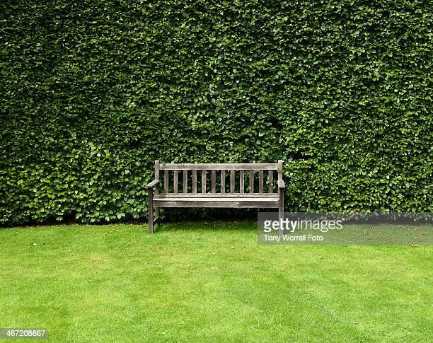 Bench at the Historic Topiary Garden in South Cumb