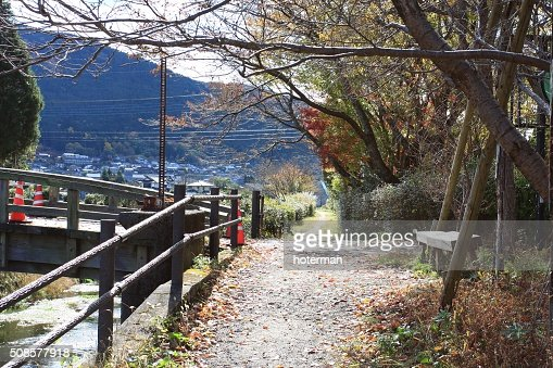 Panca sedia in autunno : Foto stock