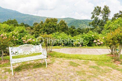 Bench In Beautiful Garden Background Stock Photo | Thinkstock